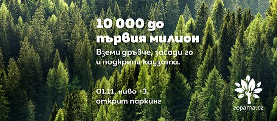 Подаряваме 10 000 дръвчета